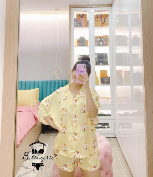 Đồ Ngủ Pijama Nữ Đẹp Cupcake Blingerie